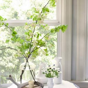 ramo y decoracion hogar